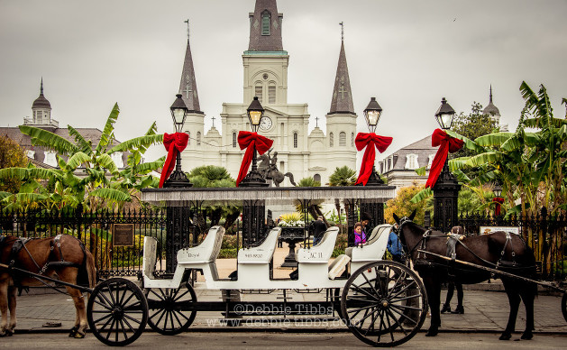 New Orleans (2 of 20)